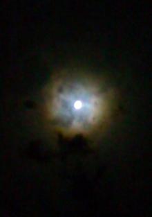 20100926moo_2